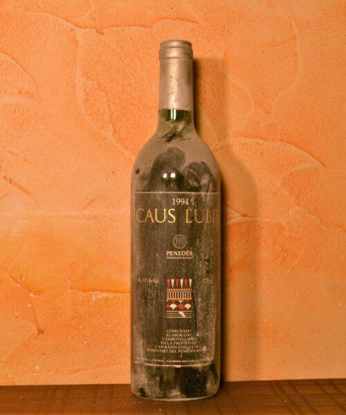 Caus Lubis 1994