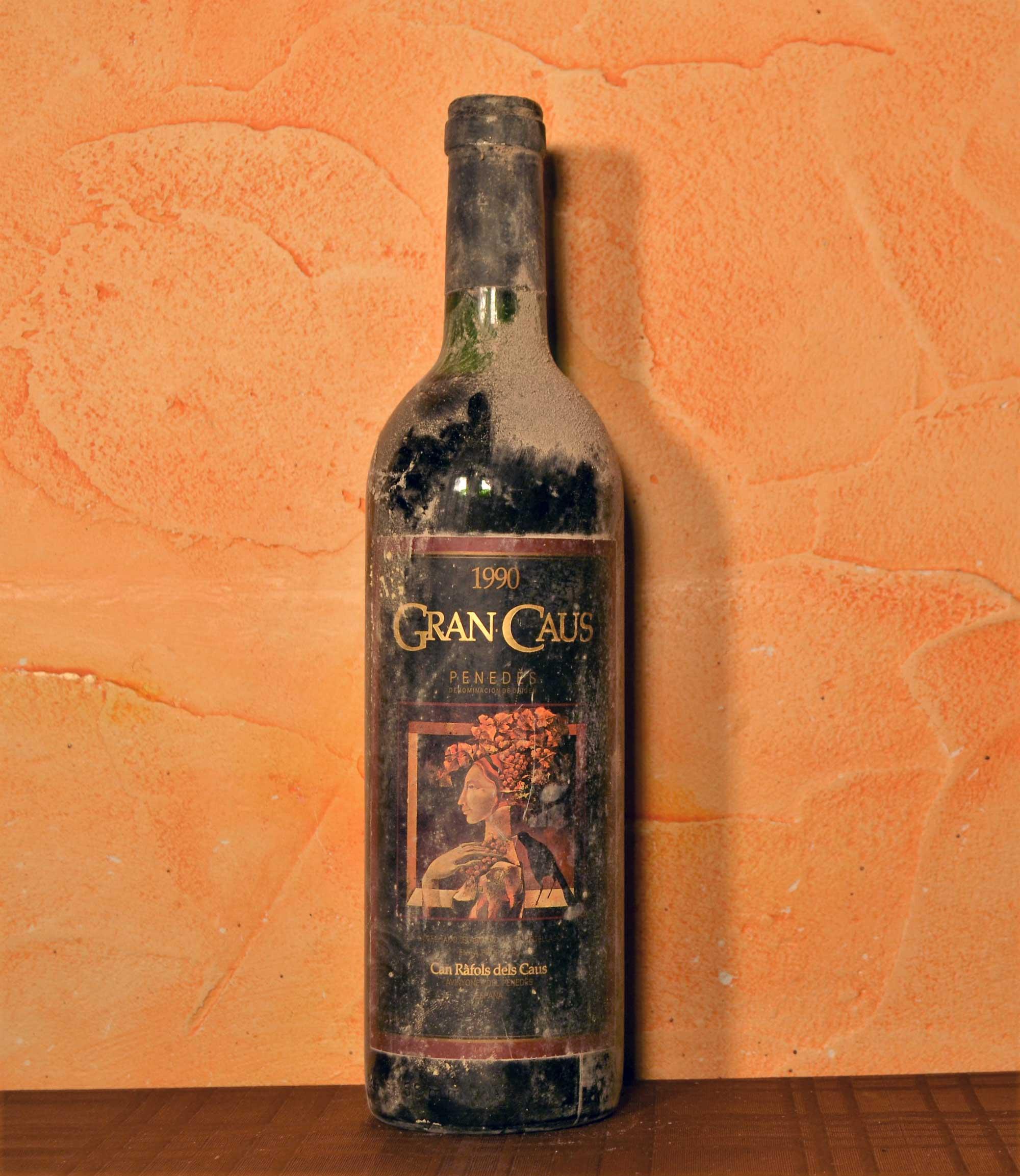 Gran Caus 1990
